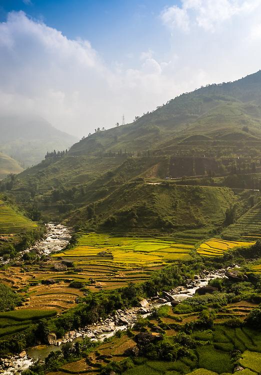 SAPA, VIETNAM - CIRCA SEPTEMBER 2014:  View of typical rice  paddy landscape in Sapa, north Vietnam.