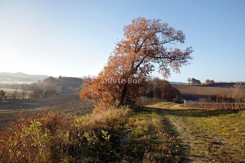 early morning landscape France Aude Razes