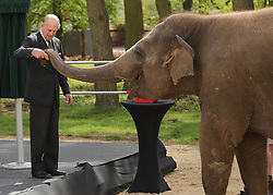 File photo dated 11/04/17 of the Duke of Edinburgh with an elephant at ZSL Whipsnade Zoo, where he and Queen Elizabeth II officially opened the zoo's new Centre for Elephant Care as part of a visit to Bedfordshire. The Duke of Edinburgh has died, Buckingham Palace has announced. Issue date: Friday April 9, 2020.. See PA story DEATH Philip. Photo credit should read: Chris Radburn/PA Wire