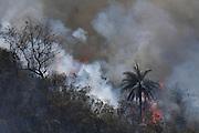 Brumadinho_MG, Brasil...Incendio no Parque Estadual da Serra do Rola Moca em Brumadinho, Minas Gerais...Fire in Serra do Rola Moca State Park in Nova Lima, Minas Gerais...Foto: JOAO MARCOS ROSA / NITRO