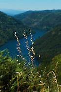 Puente de Os Peares, Ribeira Sacra Lucense<br />Os Peares reservoir, Carballedo. Lugo province, Galicia, Spain
