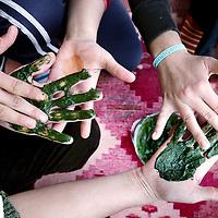 Turkije,Cirali, Antalya ,27 november 2007..Turkse vrouwen uit het Turkse kustplaatsje Cirali beschilderen traditioneel elkaars handen met Henna...Foto:Jean-Pierre Jans