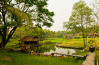 Rice paddies, Four Seasons Resort Chiang Mai, Mae Rim district, near Chiang Mai, Northern Thailand