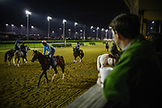 30174109A LOUISVILLE, KY. - MAY 2, 2015: Exercise riders take this years derby horses onto the track for practice during the 141st running of the Kentucky Derby at Churchill Downs.<br /> <br /> William DeShazer for The New York Times