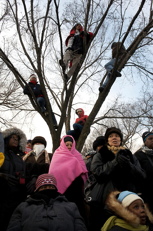 Climbing a tree to boost their view, visitors observe history in the making on the day of Barack Obama's historic Presidential inauguration.  An estimated two million people flocked to Washington D.C. for the ceremony, enduring freezing temperatures to witness Obama take the oath of office becoming the first African-American to become President, the 44th in the history of the United States of America.