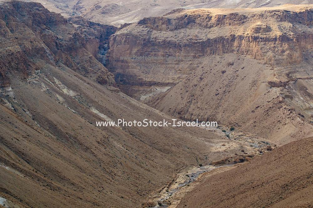 flood water flows in the creek Photographed in Nahal  Tzeelim [Tze'eelim Stream], Negev Desert, Israel  in December