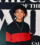 """13 February 2020 - Hollywood, California - Faly Rakotohavana at the World Premiere of twentieth Century Studios """"The Call of the Wild"""" Red Carpet Arrivals at the El Capitan Theater."""