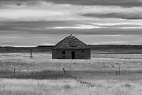 Southeast Montana has more cool-looking abandoned buildings than anywhere else I've been. I found this creepy cabin outside of Ekalaka.