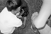 The island Dog team cares for a sick dog at Los Machos Beach, Puerto Rico.