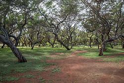 Papohaka Beach Park