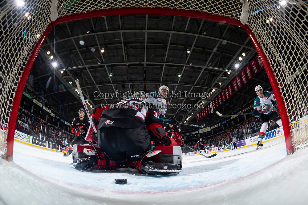 KELOWNA, CANADA - FEBRUARY 8:  Nolan Foote #29 of the Kelowna Rockets scares a first period goal on Taylor Gauthier #35 of the Prince George Cougars on February 8, 2019 at Prospera Place in Kelowna, British Columbia, Canada.  (Photo by Marissa Baecker/Shoot the Breeze)