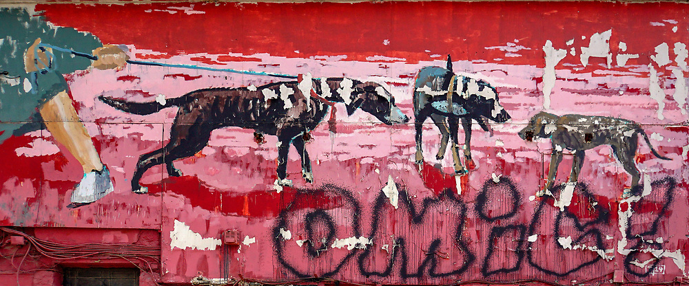 Colourful Street art abstract of a pack of dogs. Photographed in Athens, Greece