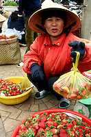 Dalat is known for its fresh flowers and strawberries for which the region is famous in Vietnam.