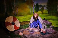 Irlande, Dublin, St Michaels Hill, Christ Church, le musée Dublinia, musée sur la période Viking et médiévale // Republic of Ireland; Dublin, the medieval museum of Dublinia
