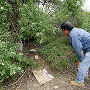 SAN DIEGO, CA, MAY 4, 2007:  Migrants who work the nearby fields or wait for work at day labor sites often use McGonigle Canyon in San Diego county as home. They construct living quarters out of branches, leaves and mud in the middle of a canyon lined with modern homes. Local activist Robert Baca, who runs a mobile health clinic for the migrants, inspects a place where a migrant has made camp. (Photo by Todd Bigelow/Aurora) Please contact Todd Bigelow directly with your licensing requests.