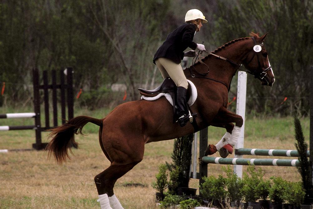 Woman equestrian jumping horse at horse trials held in San Antonio, Texas.<br /> ©Bob Daemmrich/