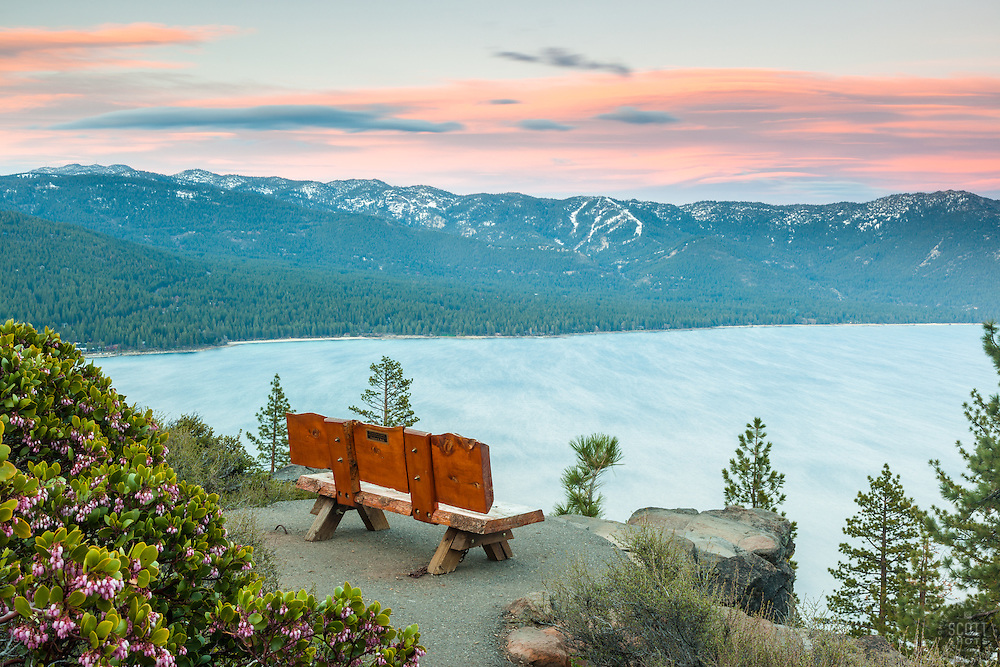 """""""Sunset at Lake Tahoe 36"""" - These Manzanita flowers and bench were photographed at sunset near the  Stateline fire lookout in Crystal Bay, Lake Tahoe."""