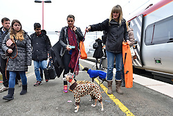 © Licensed to London News Pictures. 10/03/2016. Dog owners with their dogs on the train platform. Crufts celebrates its 12th anniversary as the Worlds largest dog show. Birmingham, UK. Photo credit: Ray Tang/LNP