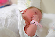 Newborn infant baby in a maternity ward. Model Release available