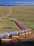 Trans Alaska Pipeline heading southwest across the rolling Arctic Coastal Plain near pipeline mile 126, Alaska.