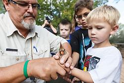Boy releasing female cardinal after bird banding and measurement , Mitchell Lake Audubon Center, San Antonio, Texas, USA.