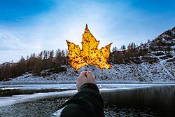 SYMBOLBILD - Herbst, Herbstblatt, Ahorn, Ahornblatt, Sonne, Sonnenstrahlen, Sonnenuntergang, Bergsee, Speicherteich, Berge, Natur, Herbstfarben, Jahreszeit, Jahreszeiten, November, Licht, Stimmung, Lichtstimmung // Autumn, autumn leaf, maple, maple leaf, sun, sunrays, sunset, mountain lake, reservoir, mountains, nature, autumn colours, season, seasons, November, Light, mood, lighting mood. EXPA Pictures © 2020, PhotoCredit: EXPA/ Lukas Huter