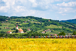 Peloton and church of St. Lawrence in Bizeljsko during 3rd Stage of 27th Tour of Slovenia 2021 cycling race between Brezice and Krsko (165,8 km), on June 11, 2021 in Slovenia. Photo by Matic Klansek Velej / Sportida