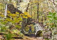 Madame Sherri's Forest.  Karen Bobotas Photographer