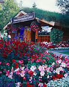 Flowers leading to the Anchorage Convention and Visitor Bureau Log Cabin Visitor Information Center, Anchorage, Alaska.