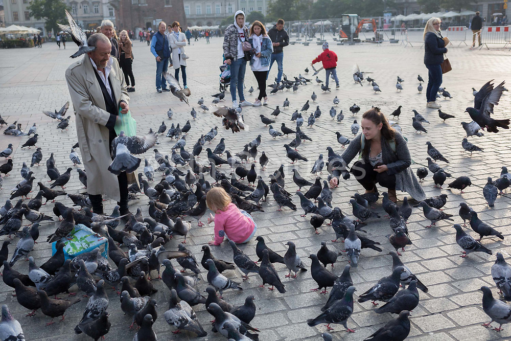 A young child plays among pigeons on the cobbled ground in Rynek Glowny market square, on 24th September 2019, in Krakow, Malopolska, Poland.