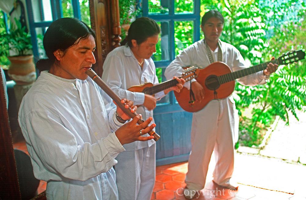 ECUADOR, HIGHLANDS Hacienda Pinsaqui, Andean musicians