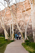 Montezuma Castle National Monument