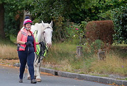 ©Licensed to London News Pictures 26/07/2020     <br /> Chislehurst, UK. A lady walking with a horse. A bright sunny Sunday morning on Chislehurst common in Chislehurst, South East London Photo credit: Grant Falvey/LNP