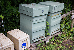 Sipson, UK. 5th June, 2018. Bee hives at Grow Heathrow. Grow Heathrow is a squatted off-grid eco-community garden founded in 2010 on a previously derelict site close to Heathrow airport to rally support against government plans for a third runway and it has since made a significant educational and spiritual contribution to life in the Heathrow villages, which remain threatened by Heathrow airport expansion.