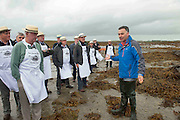 """08/09/2013 Singing to the Oysters<br /> <br /> To help wake the Native Oysters from their beds """"The Brook Singers"""", a male voice choir from Dublin, accompanied by Peter Caviston of Caviston's Food Emporium in Glasthule called to Kelly Oysters in inner Galway Bay and got the history of the Oyster from Diarmuid Kelly.<br /> September is a busy month for the Native Oysters which have just come back into season.<br /> The singers will help the oysters prepare for the upcoming Galway international Oyster Festival at the end of the Month . As well as supplying the Oyster Festivals, Kelly Oysters supply oysters throughout Ireland and around the world.<br /> Last season these much sought after delicacies were exported to 14 different countries.   Photo: Andrew Downes"""