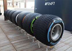 November 24, 2016 - Abu Dhabi, VAE - Motorsports: FIA Formula One World Championship 2016, Grand Prix of Abu Dhabi, (Credit Image: © Hoch Zwei via ZUMA Wire)