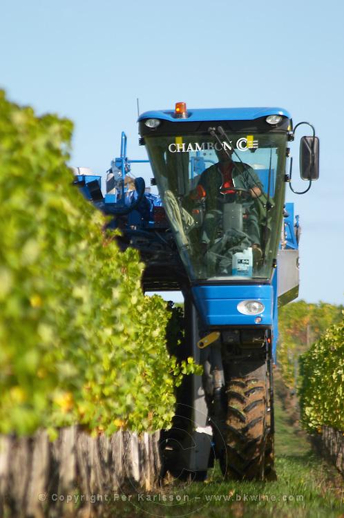 Machine harvest. Semillon. Despagne Vineyards and Chateaux, Bordeaux, France