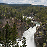 The Yellowstone River plunges over Upper Yellowstone Falls into the Grand Canyon of the Yellowstone.  This is the longest free-flowing river in North America.