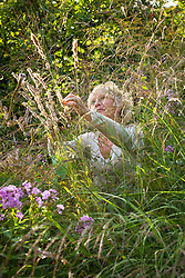 Carol klein collecting seed from Melica altissima