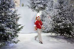 © Licensed to London News Pictures. 14/11/2012. London, UK. An Ideal Home Show employee walks through Christmas trees at the opening of the 2012 Ideal Home at Christmas show at Earl's Court, London, today (14/11/12). The show, running from the 14th to the 18th of November features over 600 exhibitors across 6 sections including; Interiors & Furnishings, Food & Drink, Home Improvements & Outdoor Living, Fashion & Beauty, Technology & Gadgets and Gifts & Decorations. Photo credit: Matt Cetti-Roberts/LNP