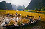 Vietnam Images-people-Ninh Binh. phong cảnh việt nam hoàng thế nhiệm Phong cảnh Vietnam