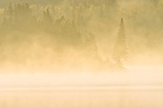 Morning fog rises over a northern lake in the boreal forest<br />Near White Lake<br />Ontario<br />Canada
