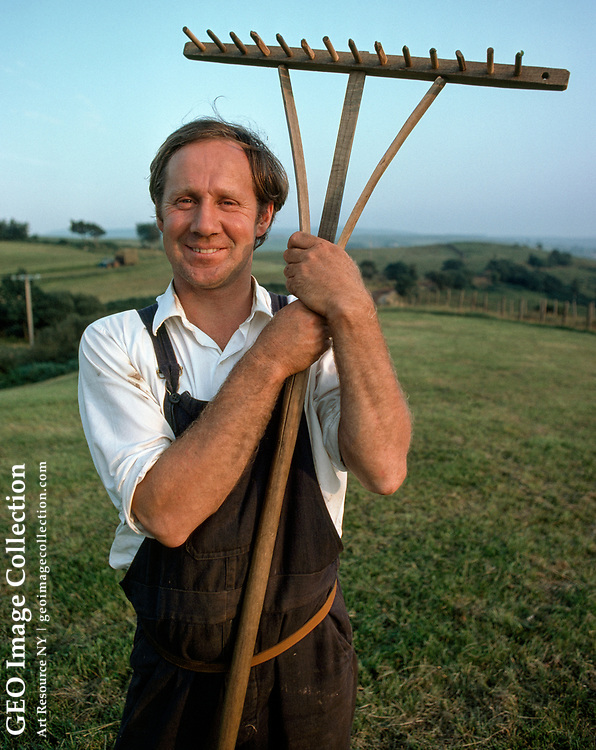 Dafydd Rowlands, portrait of a shepherd and farmer with his rake.