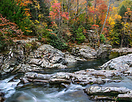 Rushing Water, Rocks And Autumn Colors In The Great Smoky Mountains National Park, Tennessee, USA