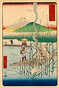 Mount Fuji from the Sagami River: From 'Thirty-six View of Mount Fuji'  1858. Utagawa Hiroshige (1797-1858) Japanese Ukiyo-e artist. Two men poling bamboo rafts. Landscape  Water Reeds Brazier  Bird Beron