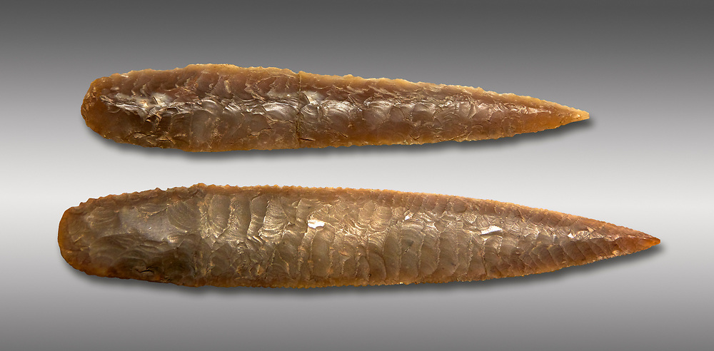 Brown obsidian dagger blades. Catalhoyuk Collections. Museum of Anatolian Civilisations, Ankara. Against a grey background .<br /> <br /> If you prefer you can also buy from our ALAMY PHOTO LIBRARY  Collection visit : https://www.alamy.com/portfolio/paul-williams-funkystock/prehistoric-neolithic-art.html - Type Catalhoyuk into the LOWER SEARCH WITHIN GALLERY box. Refine search by adding background colour, place, museum etc.<br /> <br /> Visit our PREHISTORIC PLACES PHOTO COLLECTIONS for more  photos to download or buy as prints https://funkystock.photoshelter.com/gallery-collection/Prehistoric-Neolithic-Sites-Art-Artefacts-Pictures-Photos/C0000tfxw63zrUT4