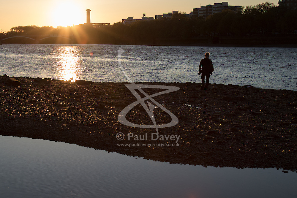 Battersea, London, April 29th 2015. After a day that started off with gloomy, damp weather, Londoners are rewarded with a beautiful spring sunset. PICTURED: A man walks along the shore of the river Thames as the tide begins to turn