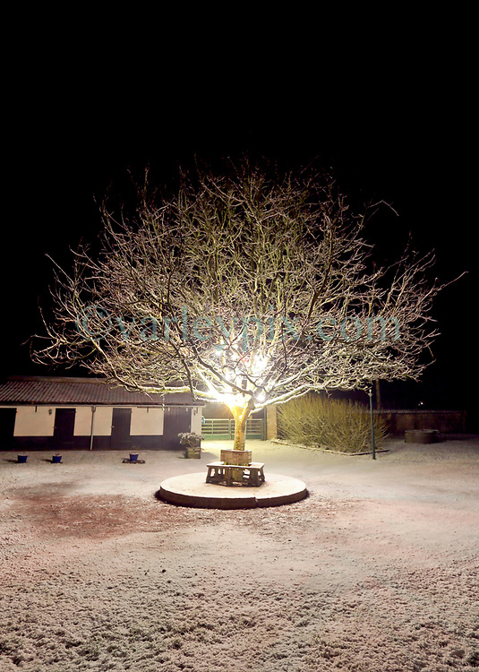 29 January 2019. Pas de Calais, France.<br /> Snow falls in the villages of Hauts de France close to Montreuil Sur Mer. <br /> Photo©; Charlie Varley/varleypix.com