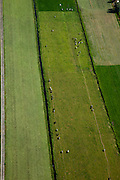Nederland, Utrecht, Gemeente Maartensdijk, 23-06-2010; Polder Achttienhoven, omgeving Westbroek. Koeien in een lange rij onderweg naar de stal om gemelkt te worden..Cows in a long line on the way to the barn to be milked..luchtfoto (toeslag), aerial photo (additional fee required).foto/photo Siebe Swart