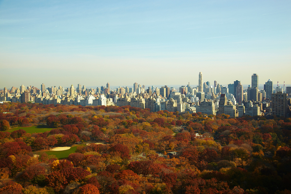 View of Central Park from 25 Columbus Circle #54C